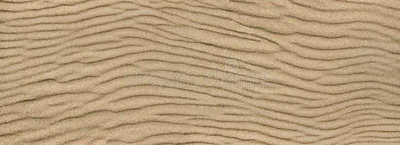 Textura de la ondulaci?n de la arena Fondo de Sandy fotografía de archivo libre de regalías