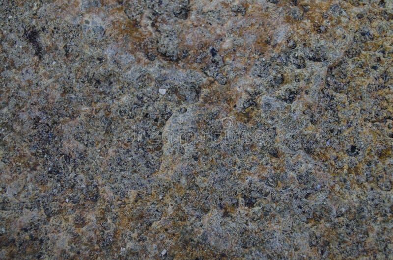 Textura de la piedra del mar fotos de archivo