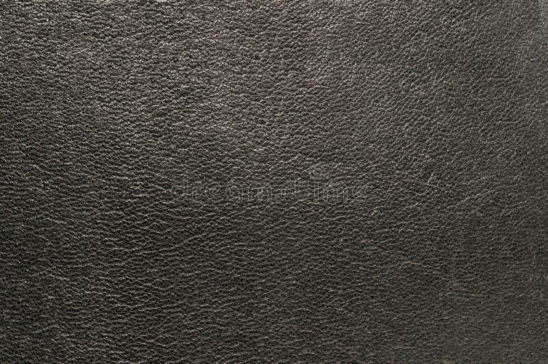 Textura de la piel foto de archivo libre de regalías