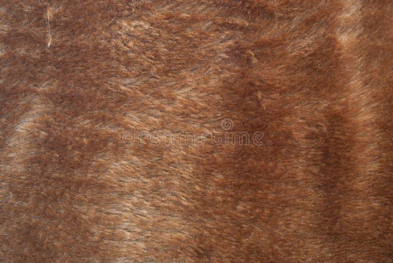 Textura de la piel de Brown fotografía de archivo
