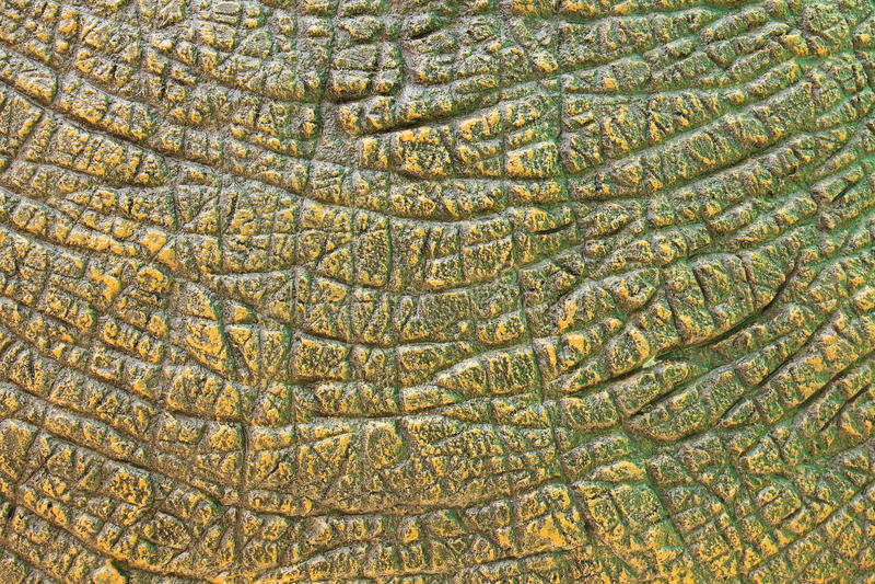 Textura de la piel del dinosaurio fotografía de archivo libre de regalías