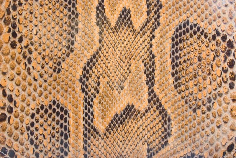 Textura de la piel del pitón fotografía de archivo libre de regalías