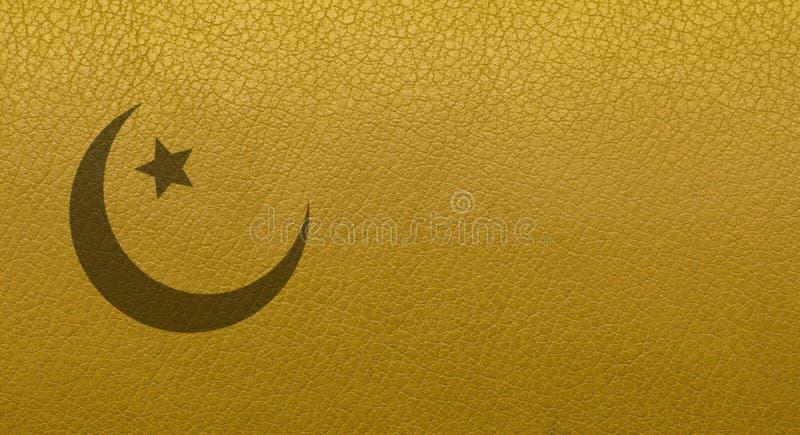 Textura de la piel Primer de la textura de la piel Productos de cuero imagen de archivo libre de regalías