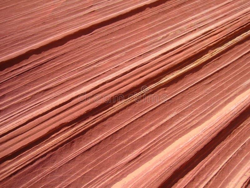 Textura de la roca en Utah foto de archivo libre de regalías