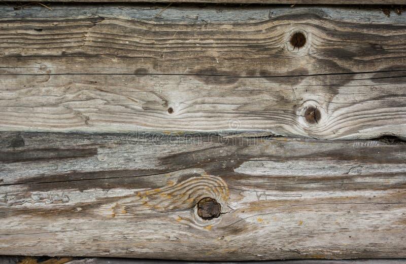 Textura de la tarjeta de madera foto de archivo