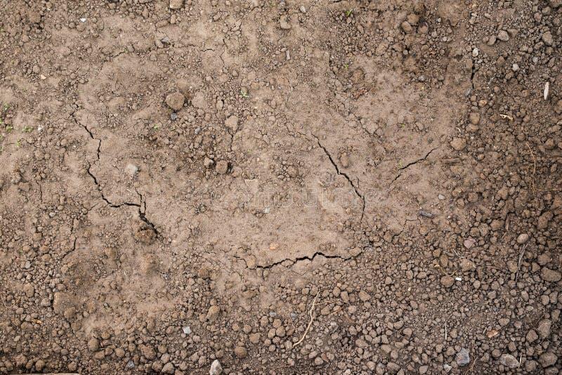 Textura de la tierra lista para plantar Tierra mojada y seca, la visión desde el top foto de archivo libre de regalías