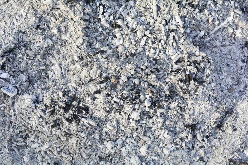 Textura de las cenizas Fondo gris natural de la madera quemada Carbones quemados fotografía de archivo