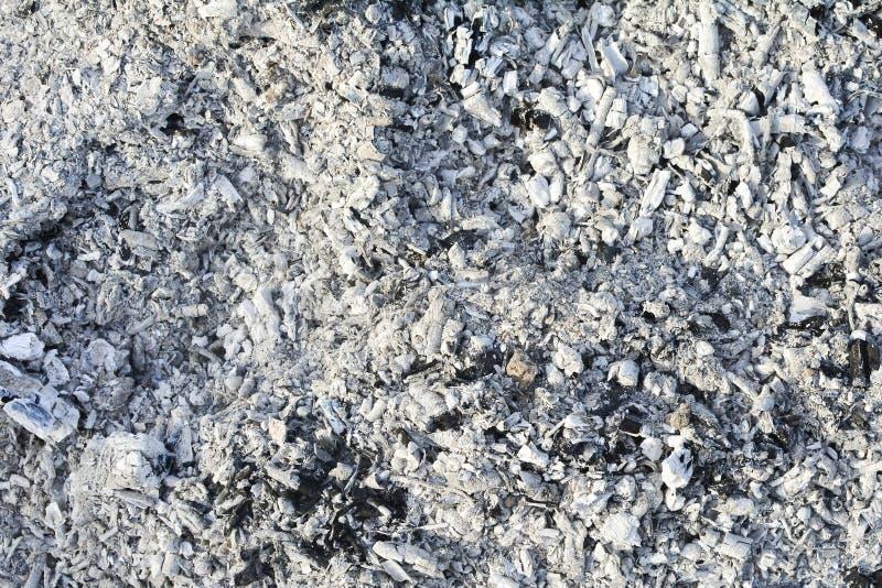 Textura de las cenizas Fondo gris natural de la madera quemada Carbones quemados imagen de archivo