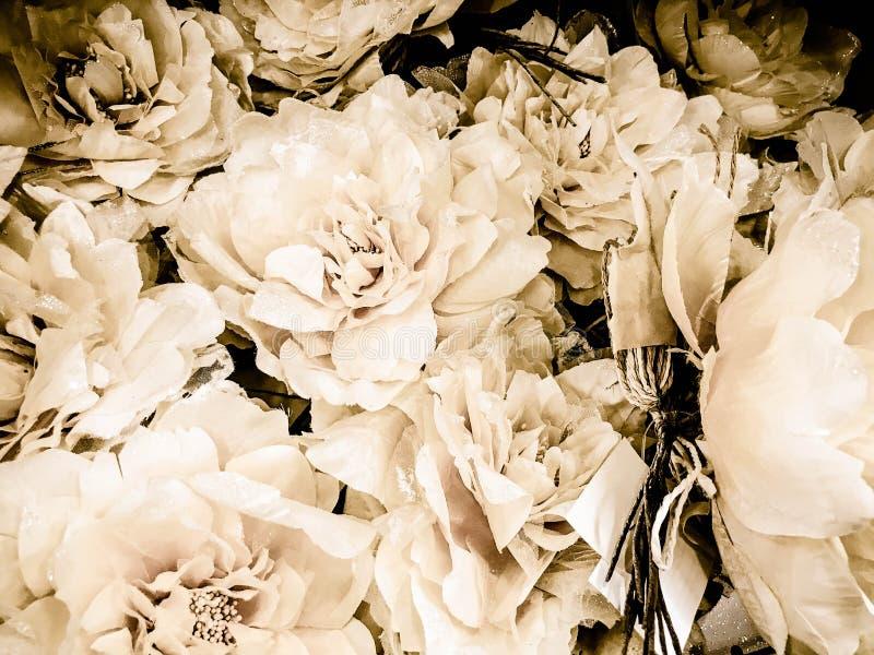 Textura de las flores hermosas beige blancas con los pétalos enormes delicados con las chispas Los antecedentes foto de archivo
