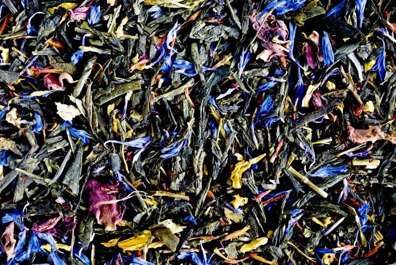 Textura de las hierbas imagen de archivo