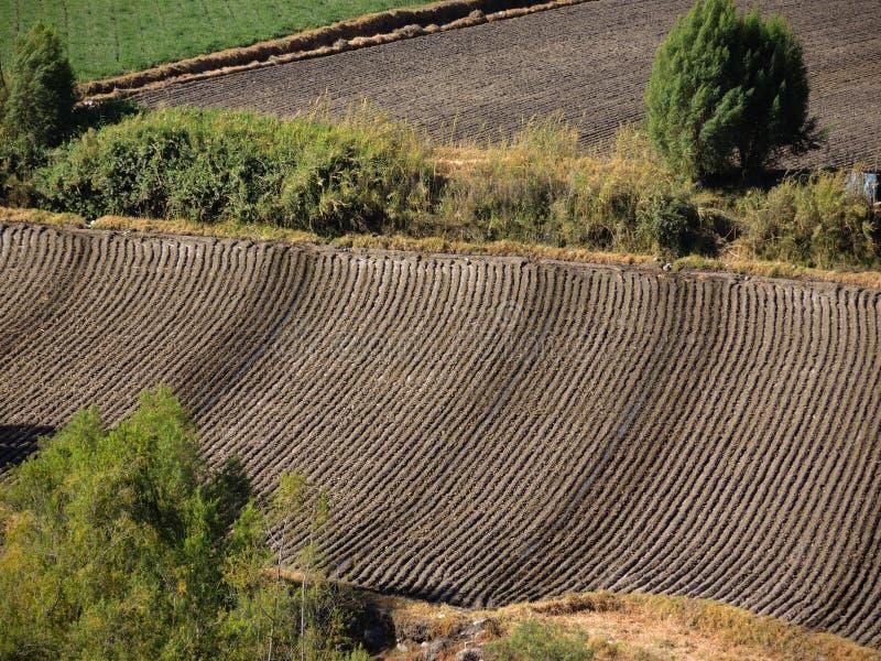 Textura de las tierras de labrantío foto de archivo libre de regalías