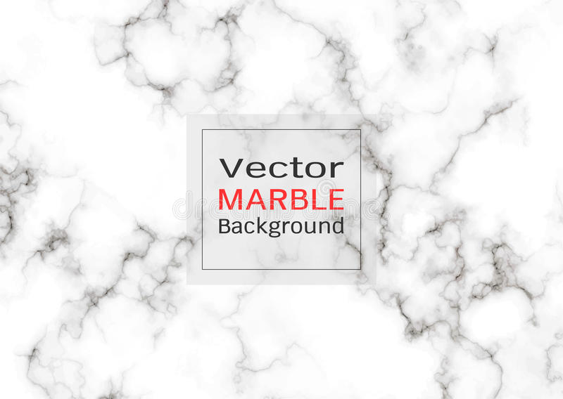 Textura de mármol blanca abstracta, fondo del modelo del vector stock de ilustración