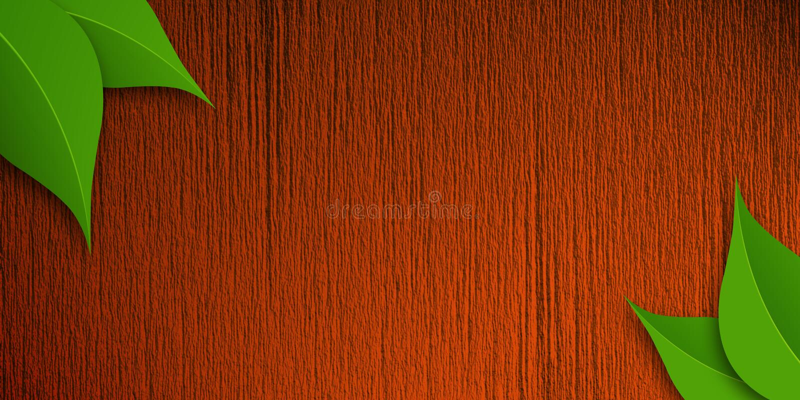 Textura de madeira Bacground ilustração royalty free