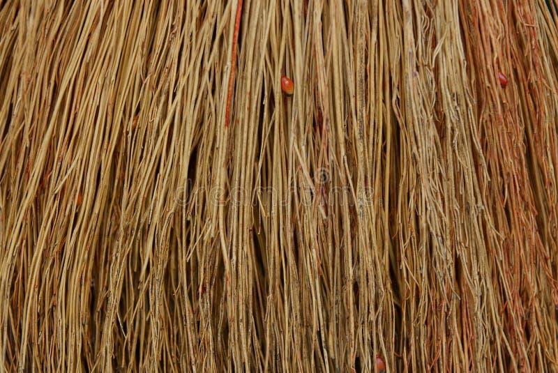 Textura de madeira de Brown de ramos finos em um grupo da vassoura imagens de stock