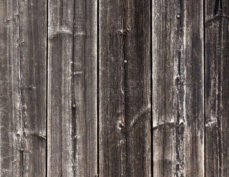 Textura de madeira cinzenta resistida da cerca com pregos imagem de stock