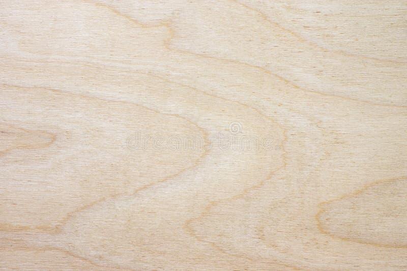Textura de madeira clara fotografia de stock