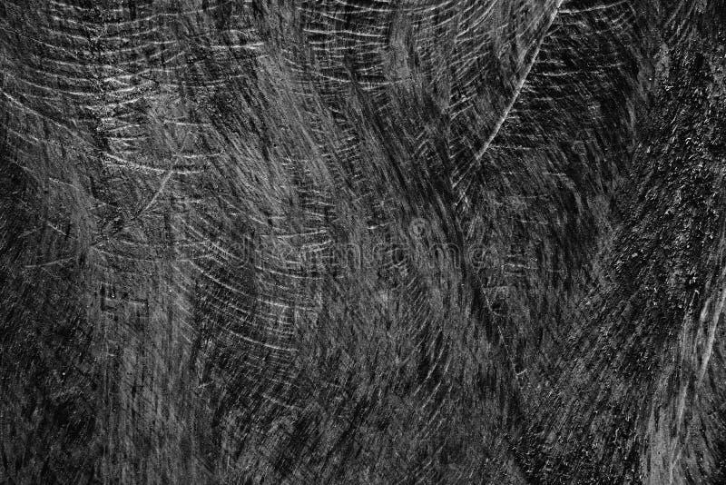 Textura de madeira com traços do sawtooth fotos de stock