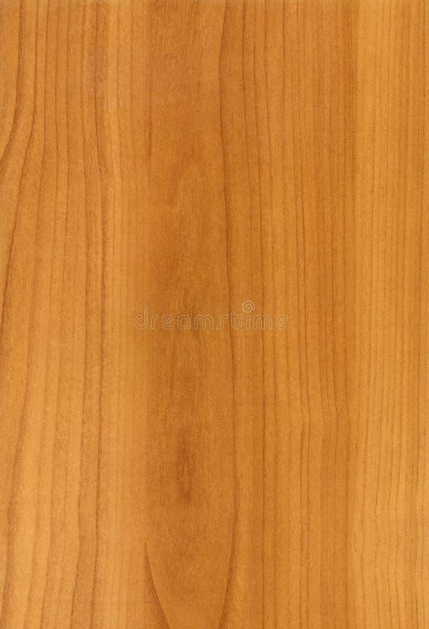 Textura de madeira da cereja foto de stock