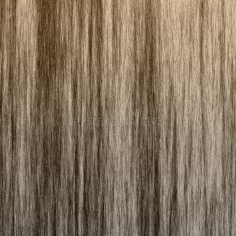 Textura de madeira da grão