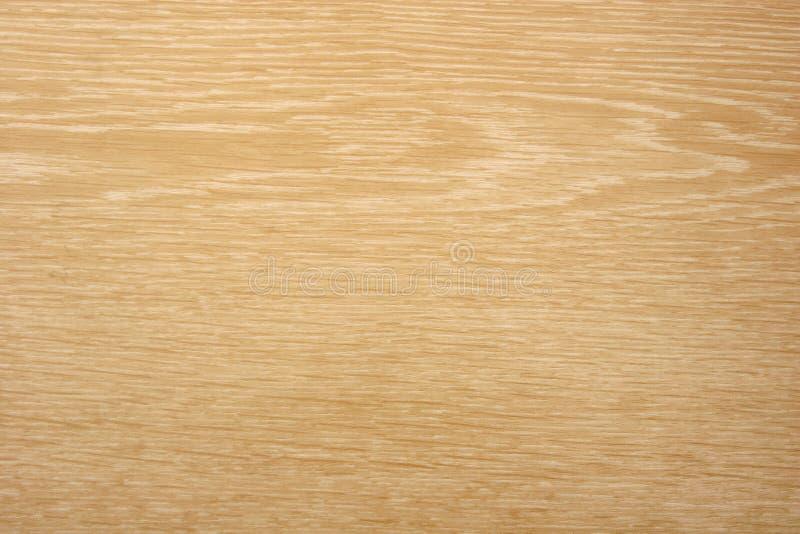 Textura de madeira da grão da árvore de Apple imagens de stock