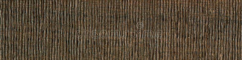 Textura de madeira da grão, a madeira africana da acácia a textura da madeira, corte de madeira da grão imagens de stock royalty free