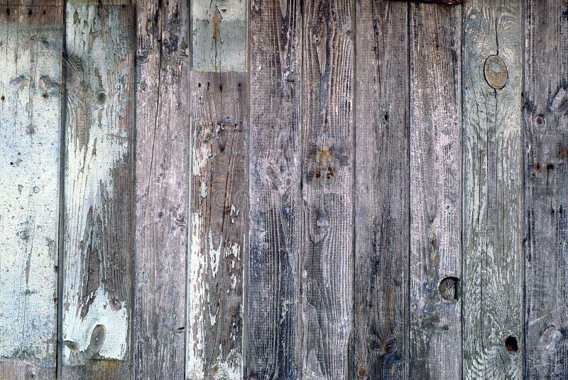 Textura de madeira da parede imagens de stock royalty free