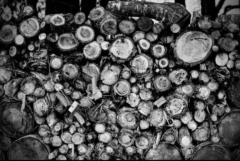 Textura de madeira da pilha fotografia de stock