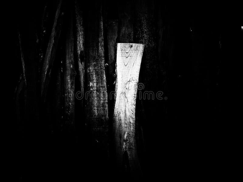 Textura de madeira da pilha em preto e branco imagens de stock