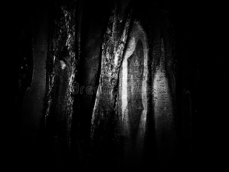 Textura de madeira da pilha em preto e branco fotos de stock royalty free