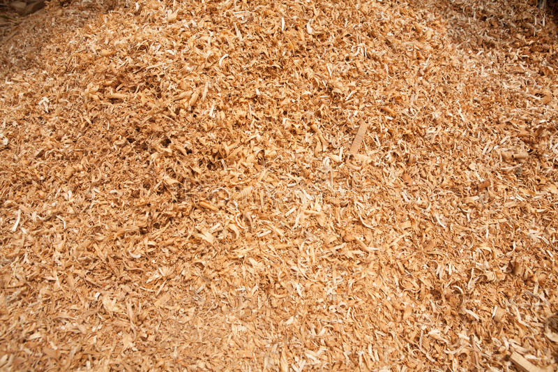 Textura de madeira da serragem da teca fotos de stock royalty free