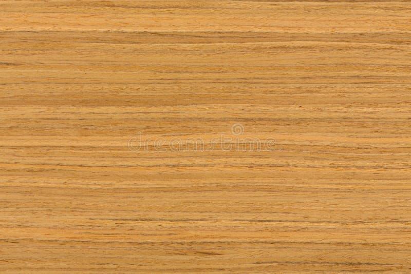 Textura de madeira da teca com testes padrões naturais fotografia de stock