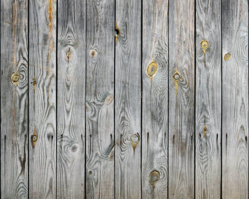 Textura de madeira das pranchas imagem de stock royalty free