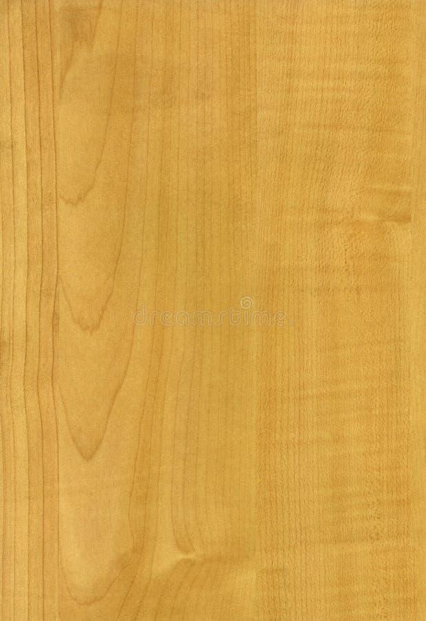 Textura de madeira de Medison do bordo imagem de stock royalty free