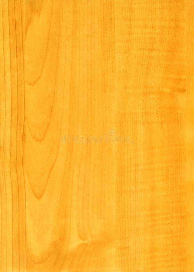 Textura de madeira de Medison do bordo do Close-up fotos de stock