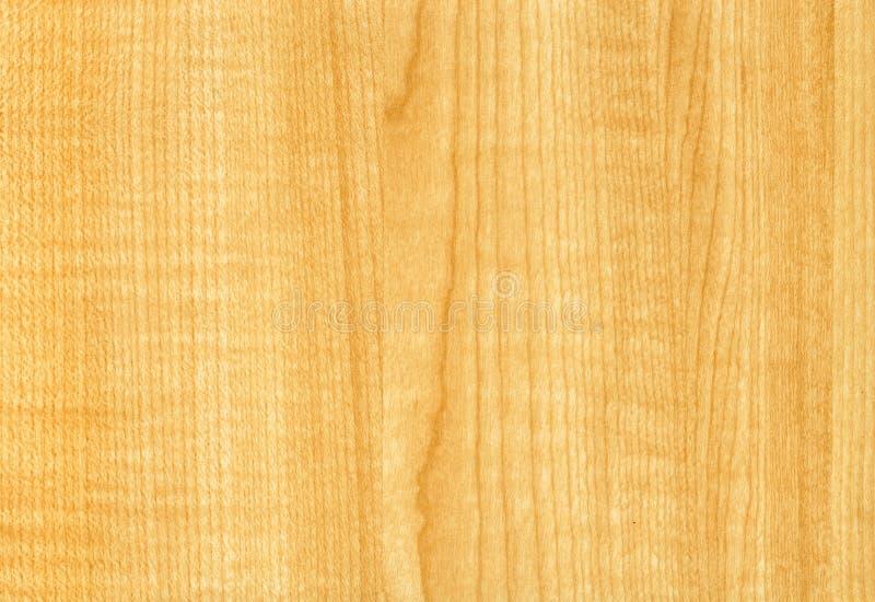 Textura de madeira de Thansau do bordo ao fundo fotografia de stock royalty free