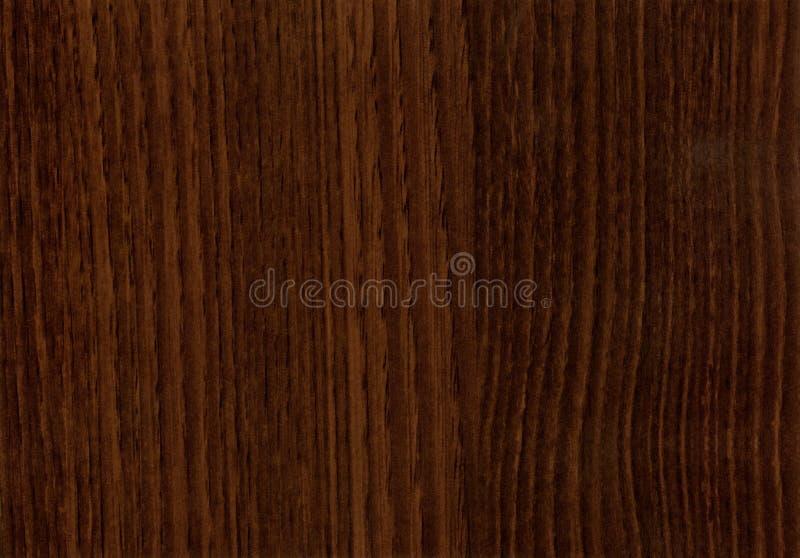 Textura de madeira de Wenge da castanha do Close-up fotos de stock