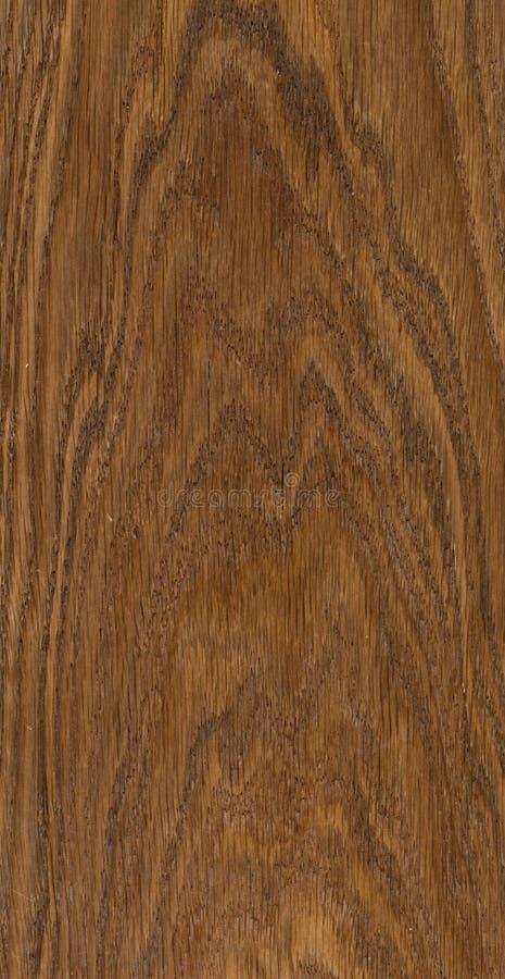 Textura de madeira do corte fotos de stock royalty free