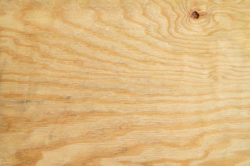 Textura de madeira do pinho foto de stock