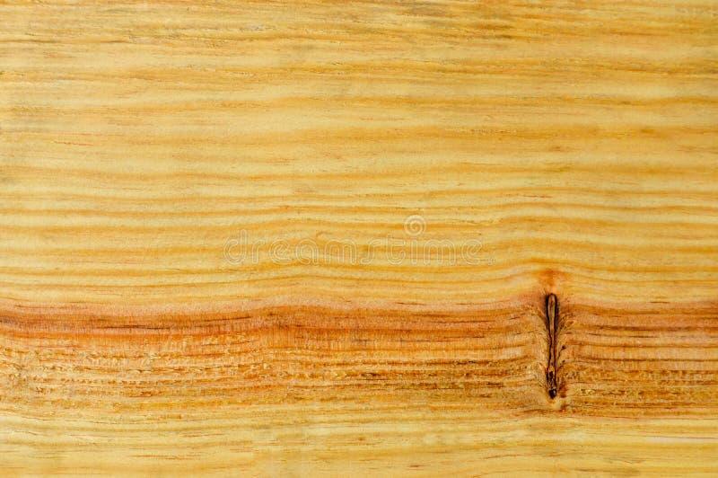 Textura de madeira do pinho imagens de stock
