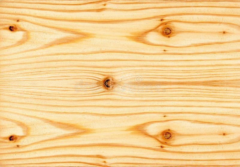 Textura de madeira do pinho fotografia de stock royalty free