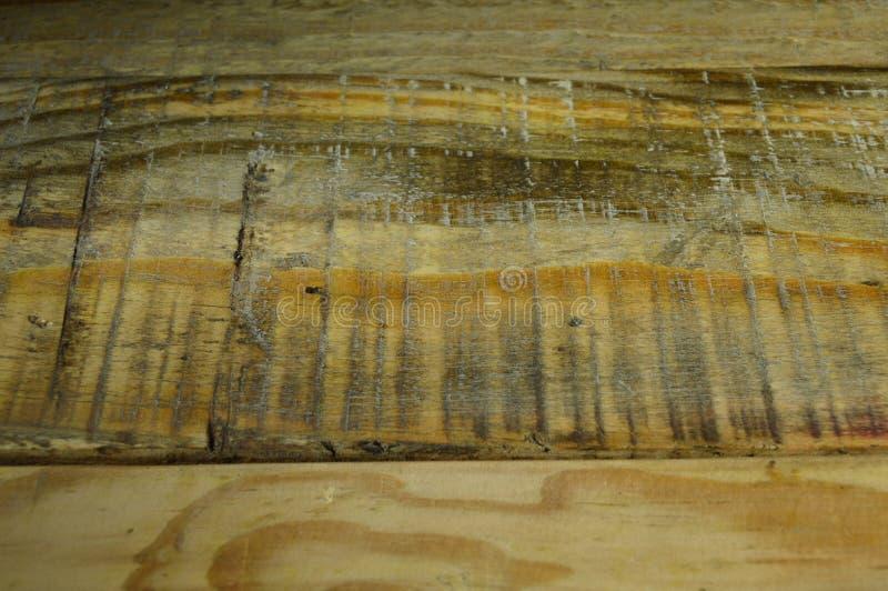 Textura de madeira do pinho Grão, tampa fotografia de stock royalty free