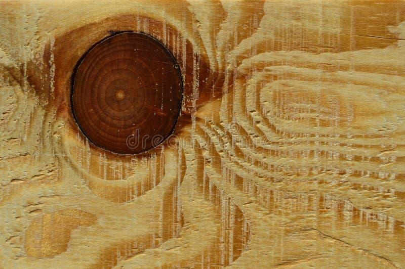 Textura de madeira do pinho Grão, tampa fotos de stock