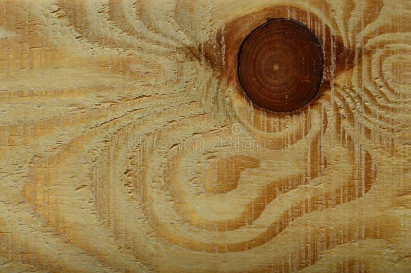 Textura de madeira do pinho Grão, tampa fotografia de stock