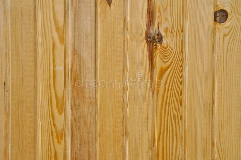 Textura de madeira do pinho Grão, tampa Revestimento, fibras imagens de stock