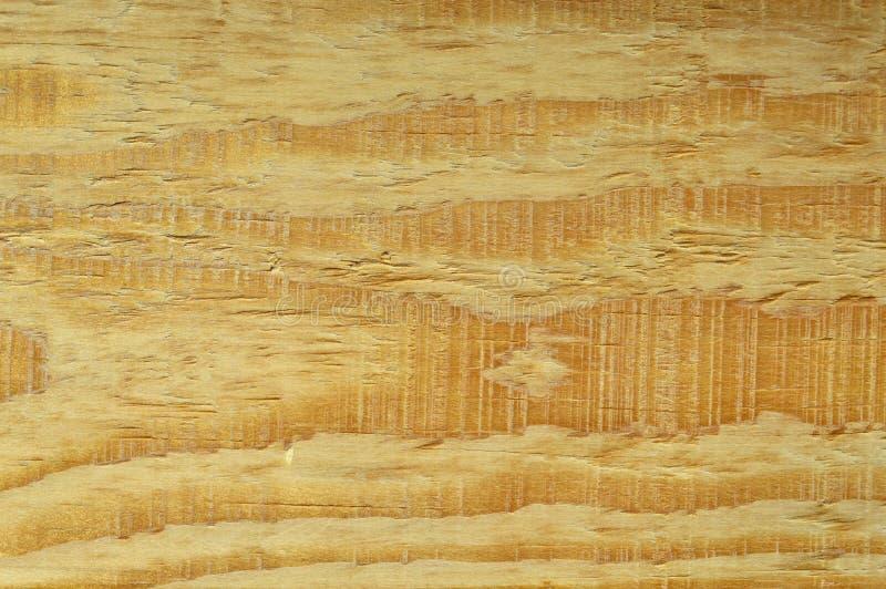 Textura de madeira do pinho Gr?o, tampa Carpinteiro, decorativo imagens de stock royalty free