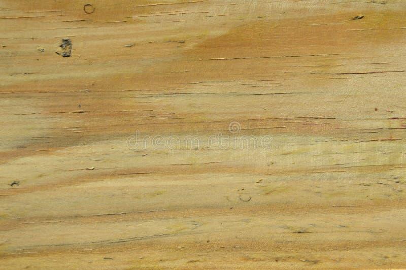 Textura de madeira do pinho Gr?o, tampa Carpinteiro, decorativo fotos de stock