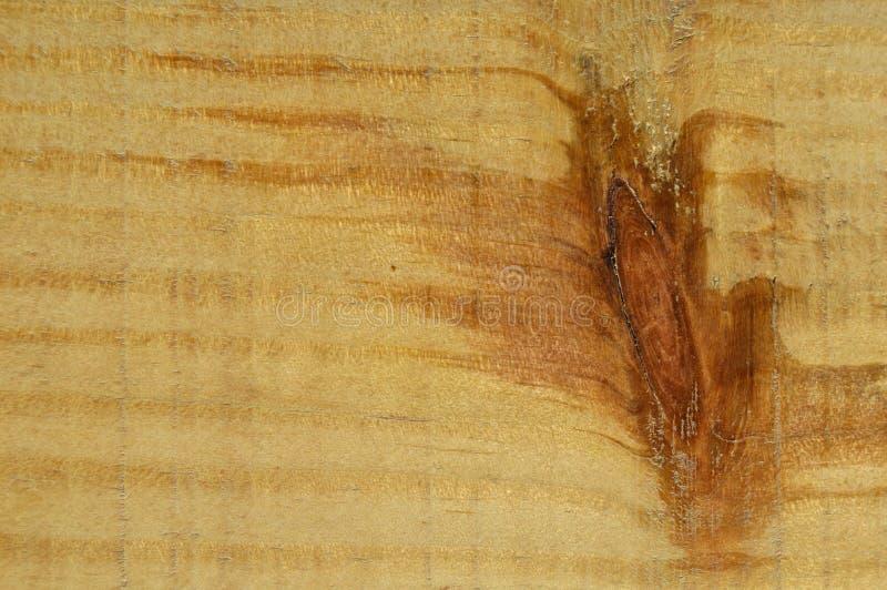 Textura de madeira do pinho Gr?o, tampa fotos de stock