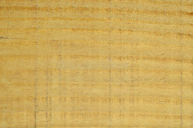 Textura de madeira do pinho Gr?o, tampa imagens de stock