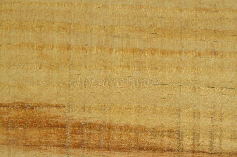 Textura de madeira do pinho Gr?o, tampa fotos de stock royalty free