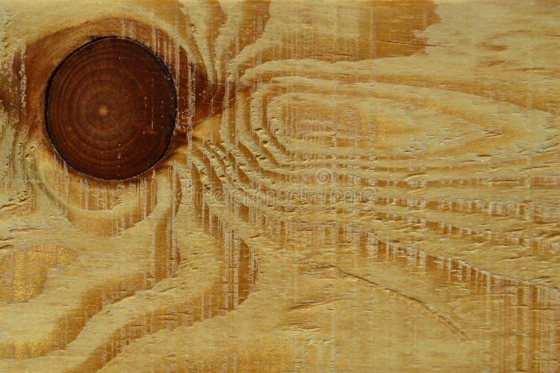 Textura de madeira do pinho Gr?o, tampa foto de stock royalty free
